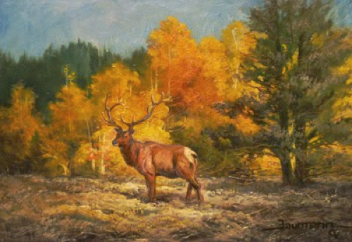 Painting Wild Animals In Teton National Park