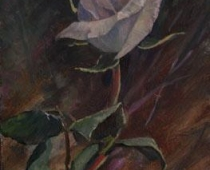 A Single Rose, painting of a pale pink rose by Stefan Baumann