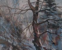 Hammond Ranch Oak Tree, painting of an oak tree in winter by Stefan Baumann