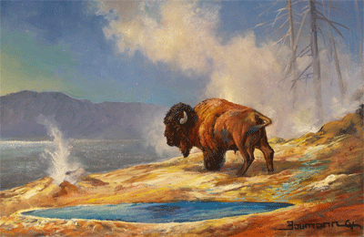 Painting Wildlife in Yellowstone National Park