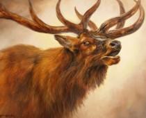 Painting of an elk calling out by artist Stefan Baumann