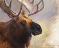 Moose, Opus 1, oil on canvas. Wildlife painting by artist Stefan Baumann