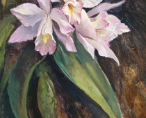 """This is an image of a """"Birthday Orchid"""" still life, painted by Stefan Baumann"""