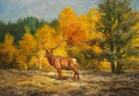 "Painting of an elk entitled ""Wapiti Study, Opus 1"" painted by Stefan Baumann"