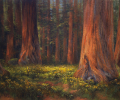 Sequoia National Park: Among the Giants