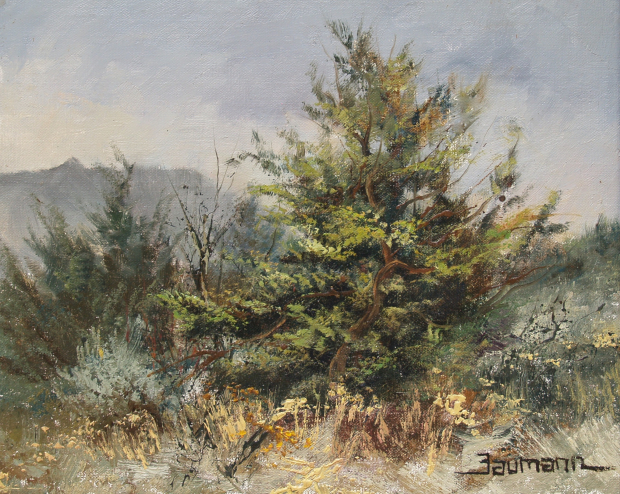 Lava Beds Painting: Juniper Tree