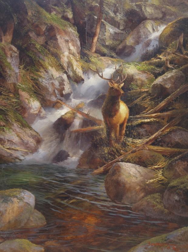 Mt. Shasta, Faery Falls: Wapiti Sanctuary