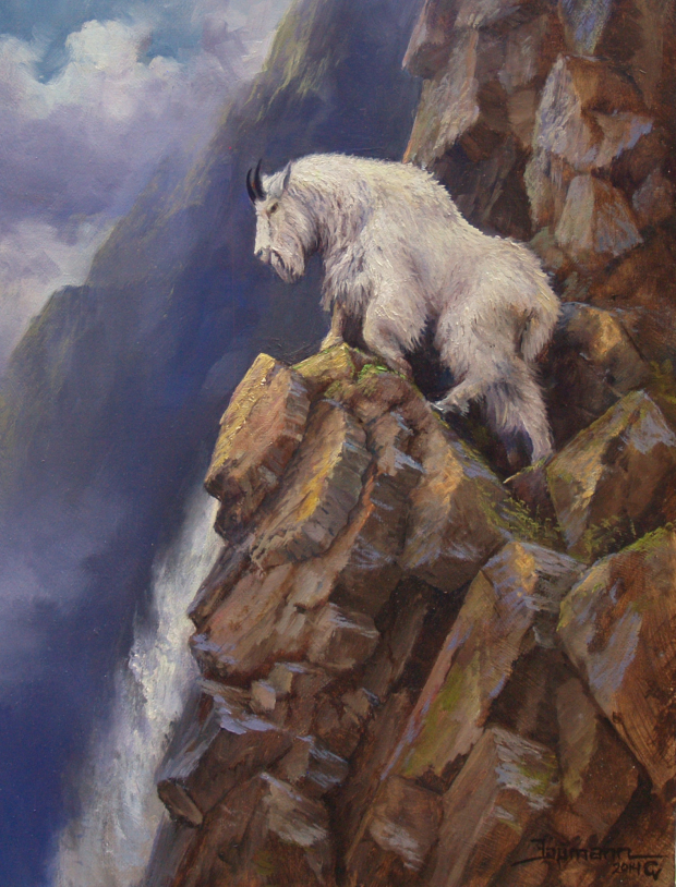 Ascending Mountain Goat