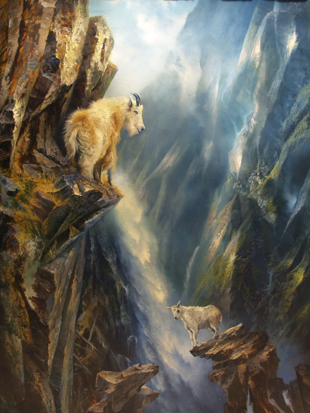 Glacier Park: Mountain Goat's First Lesson